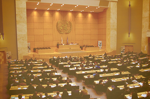 The U.N. General Assembly